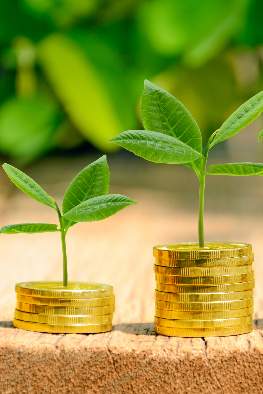 You Need to Invest Smartly: 7 Rules Investors Follow